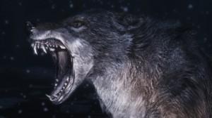Entm.Wolve
