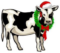 12-4-Weihnachtsmorgen