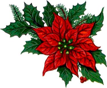 Das Feuerrot des Weihnachtssterns erinnert uns an Deine Liebe, Jesus –  - eine Liebe die so stark ist, so rein, so mächtig, so vollkommen!  Deine Liebe ist niemals langweilig, eintönig, getrübt oder leblos! Hilf uns, niemals wegen unserer Liebe zu Dir beschämt zu sein, sondern unsere Gefühle der Welt so hell und klar und kräftig zu zeigen, wie wir es nur können. Du schämst dich nicht dafür, unser Liebhaber zu sein, und wir sind stolz darauf, Deine Braut  zu sein.