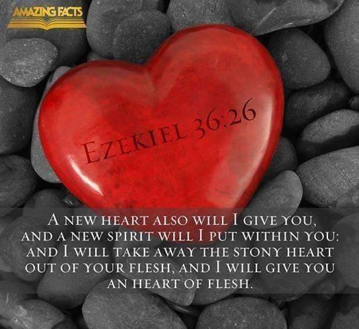 hesekiel-new heart