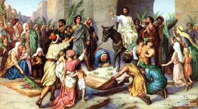 Bible Faith Mission India Ministry : Jesus' Triumphal Entry into Jerusalem  Temple An Exposition of Matthew Chapter 21 -- By David L. Cooper