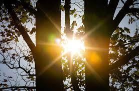1-Sonnenschein